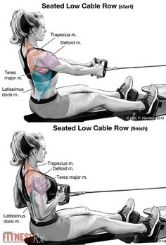 Workout Routines for all Body Parts : – Image : – Description Firm Your Back and Improve Your Posture With Low-seated Cable Rowing Sharing is power – Don't forget to share ! Cable Machine Workout, Cable Workout, Rowing Workout, Gym Workouts, Workout Routines, Fitness Motivation, Fitness Tips, Health Fitness, Kardio Workout