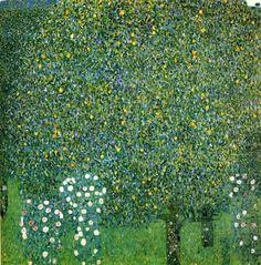 Gustav Klimt • Rosiers sous les arbres, vers 1905