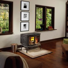 Avalon Arbor Pellet Stove-- small one for the master bedroom