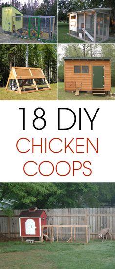 18 Amazing DIY Chicken Coop Projects