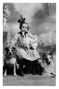 Vintage Dog Card-- Child with Pit Bull, Smooth Fox Terrier Mix and Collie by TheHauserGallery on Etsy