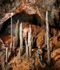 Ein Höhlenforscher bewundert die «Night Watchmen»-Stalagmiten in der Whiterock-Höhle im malaysischen Gunung Mulu Nationalpark auf Borneo. Tropische Stalagmiten sind Klimaarchive, da sie Informationen, z.B. über Veränderungen im Niederschlag, speichern. (Bild: Robbie Shone www.shonephotography.com)