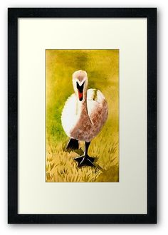 Watercolour painting of a beautiful swan walking • Millions of unique designs by independent artists. Find your thing. Framed Prints, Canvas Prints, Art Prints, Beautiful Swan, Claude Monet, Watercolour Painting, Glossier Stickers, Art Boards, Walking
