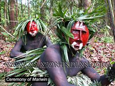 Image from http://www.amazon-indians.org/matis-indians-mariwin.jpg.