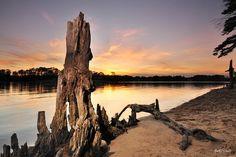 First Landing State Park, Virginia Beach, VA by ByTheChesapeakeBay, via Flickr
