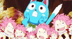 Naw Cat Funny Gif #14510 - Funny Cat Gifs|Funny Gifs|Cat Gifs