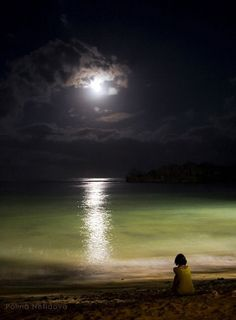 scentdelanature:- Looks and feels just like you - pm me - go on - take the chance!  Moonlight by Polina Nefidova