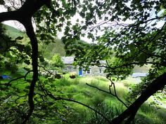 Led Zeppelin - Bron-Yr-Aur Cottage near Machynlleth in South Snowdownia, Wales