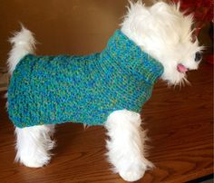 Summer Nights Dog Sweater Turtleneck  aqua by CozyPupSweaters
