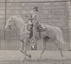 102 Best Vintage Equestrian Stock And Western Images In