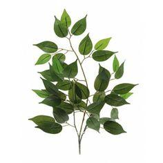 Artificial Basic Ficus Branch Green 81P