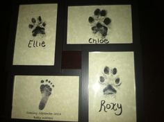 Our baby announcement to our families -- We inked each of our three dogs' paws and then found a baby foot online. We put them in a four-picture frame. A great keepsake!