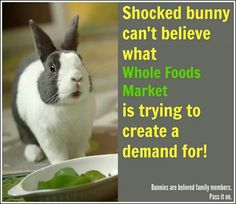 What is the overall message? In Summer Whole Foods Market announced that they were embarking on a pilot campaign to begin selling rabbit meat at a handful of locations around the country. Intelligent People, Whole Foods Market, Nature Animals, Whole Food Recipes, Marketing, Meat, How To Make, Bunny Rabbit, Summer 2014