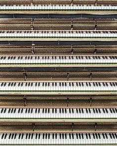 Steinway. El teclado preferido de los Manos, de Rick Wakeman, de Oscar Peterson, del pulpo Manotas.