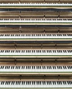 The Making of a Steinway Piano: Piano Keys in Polishing Department, 2012.   (Christopher Payne in the Steinway Piano Factory : The New Yorker)