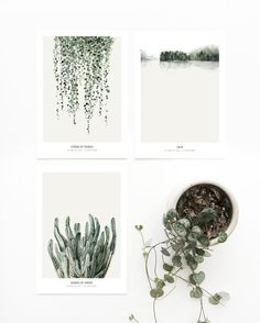 Postcard set 'Botanics' printed on white 270 g. cardboard paper.The graphics can be used as a postcard or a small artwork to frame.Paper size A5 (148x210 mm) SHIPPINGThe postcards come in a set of three, in a cardboard box.