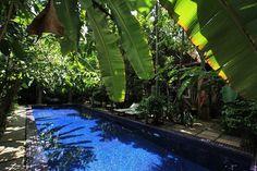 Insider deals are waiting so grab them now! In SiemReap- Angkor- Cambodia   www.petitvilla.com booking@petitvilla.com +855 888 575 389