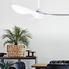The Hayman's design, with a manta ray like curve to its fins, is both sleek and functional. Available in two colours, white and chrome, the fan's inbuilt light kit will provide both light and flow to your room.
