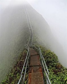 """The Haiku Stairs, or the Stairway to Heaven, is a semi-secret forbidden hike on the island of Oahu, Hawaii. The stairs were originally built in 1943 to install antenna cables as part of a larger military radio communication system to communicate with US Navy submarines as far away as Tokyo Bay."""