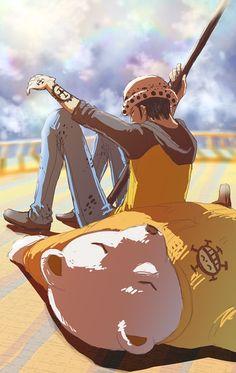 Trafalgar Law,Shichibukai - One Piece,Anime