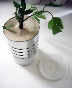 DIY upside down plant hanger pot.