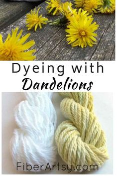 Natural Dye from Plants with Dandelions – Learn How to Dye Yarn or Fabric Naturally using the Dandelion Flowers from your backyard. Yarn Crafts, Bead Crafts, Fabric Crafts, Paper Crafts, Natural Dye Fabric, Natural Dyeing, Textiles, Fibre And Fabric, Popsicle Stick Crafts