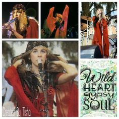 Stevie Nicks Collage Created By Tisha 10/08/15
