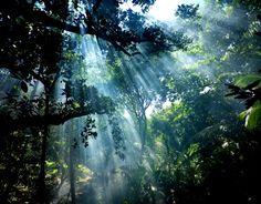 自然と光 大昔から変わらない景色