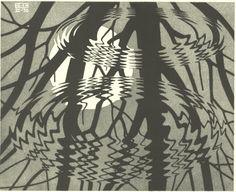 Escher: naturalezas