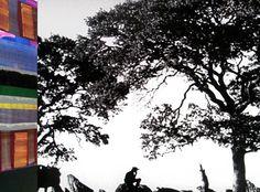 La galería Soledad Lorenzode Madrid inaugura hoy jueves, 24 de mayo, la exposición High Noon del artista cántabro Juan Uslé (Santander, 1954). La muestra incluye un total de 15 pinturas pertenecientes a tres de las varias familias pictóricas de Uslé: Soñé que revelabas, Nemaste y Rizomas-Manthis, realizadas entre los años 2010 y 2012.