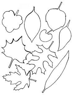 szablon liści - Szukaj w Google