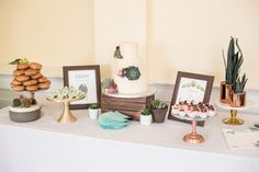 Succulent cake and truffles   Photo by: Caught Fire Photography