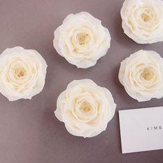 Third new rose of KIM&CAKE in 2016 with lovely name 'Sweet Elegance Rose' Thank you @extraordinary_ej KIM&CAKE tries to best to make more signature flowers of KIM&CAKE. 킴앤케이크만의 새롭고 아름다운 꽃을 위해 열심히 노력하고있습니다! #bakingclass#buttercream#cake#baking#수제케이크#weddingcake#버터크림케이크#꽃#flowers#buttercake#플라워케이크#wedding#버터크림플라워케이크#specialcake#birthdaycake#flower#장미#rose#디저트#케이크#cupcake#dessert#food#beautiful#부케#bouquet#instacake#꽃스타그램#flowercake#peony@yoon2222222