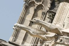 Gargoyles of Notre-Dame (Photos).   http://www.vigoenfotos.com/paris/paris_gargolas_notredame_gargoyle_1.en.html#.UA_s1I5ZHzc