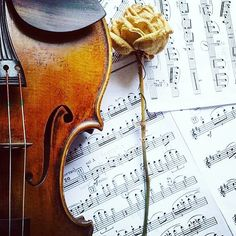 Tag a friend who loves violin music!   Hello violin lovers! Let's stay in contact -  follow my profile  and feel free to ask me anything about #violinistlife   _____________________________ #violin   #violino   #violinist   #violinmusic   #sheetmusic   #scores   #musicaclassica   #classicfm   #skrzypce   #skrzypczyni   #violinlovers   #violinlife   #скрипка   #violinart   #geige   #musicianlife   #bestmusicshots   #musicphoto   #nuty   #instrument   #jj_musicmember  @classicfm @_violinmusic…