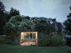 This Overgrown Garden Shed Is Almost Magical