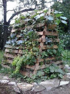 Raised Hugelkultur bed with pallets. Extremely interesting thread on this link.......