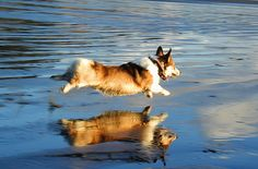 """The reflection of the world is blues..."" - Jimi Hendrix  