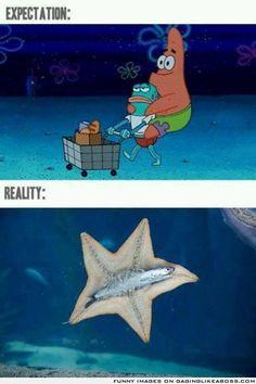 Spongebob expectation vs. reality
