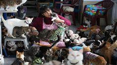 La mugger ques crab 175 goats con leukemia necessitate Day in the world history. http://ift.tt/2q1cEDx
