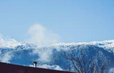 La mañana de Puerto Aysén | Flickr: Intercambio de fotos