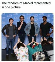 Hiddleston is cont - Marvel Universe Marvel Avengers, Avengers Humor, Marvel Jokes, Films Marvel, Funny Marvel Memes, Dc Memes, Marvel Dc Comics, Marvel Heroes, Avengers Actors
