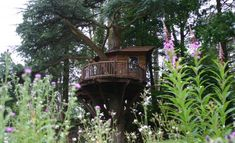 This picturesque treehouse is set in the beautiful Cumbrian countryside and was featured as part of Discovery Channel's 'Tree Team' series.
