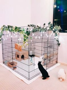 Diy Bunny Cage, Bunny Cages, Dog Cages, Rabbit Cage Diy, Cages For Rabbits, Pet Bunny Rabbits, Pet Rabbit, Rabbit Pen, Dwarf Bunnies