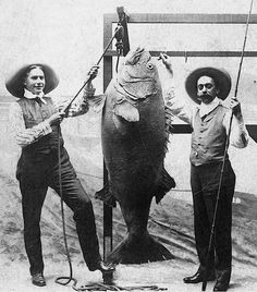 45 Cool Pictures That Show People Posing With Their Big Fishes in the Past ~ vintage everyday Fishing Photos, Fishing Tips, Fishing In Canada, Steampunk Illustration, People Poses, Vintage Fishing, Going Fishing, Big Fish, Salt And Water