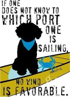 Nautical Portuguese Water Dog by I Love Dogs, Puppy Love, Dog Hotel, Group Of Dogs, Portuguese Water Dog, Paws And Claws, Nautical Art, Wow Art, Dogs And Puppies