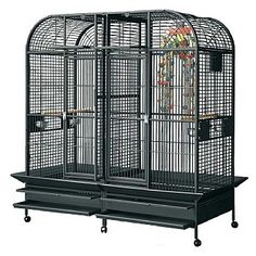 This very large Montana Los Angeles Large Parrot Cage with Divider has lots of useful features, like four feeders, two perches, breeder door, seed catcher and slide out metal grille and tray. Buy yours now. Parrot Cages For Sale, Large Parrot Cage, Parrot Pet, Parrot Toys, Pet Bird Cage, Bird Cages, Macaw Cage, Budgies, Parrots