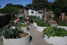 client_well-ring-2 Concrete Planters, Garden Planters, Garden Beds, Back Gardens, Outdoor Gardens, Australian Garden, Vegetable Garden Design, Garden Structures, Edible Garden