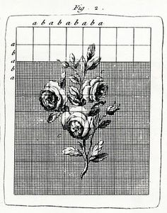 The illustration comes from my Diderot's Encyclopaedia of Trades and Industry which was originally published in 1763.