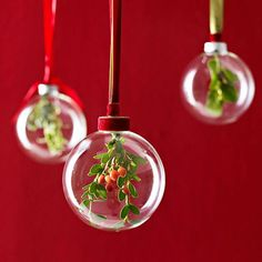 Holly Holiday Christmas Tree Ornaments
